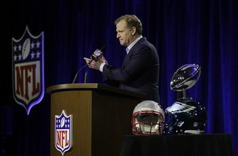 Goodell wants league to look deeply into catch rule